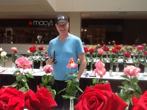 Rich Aanrich in Roses