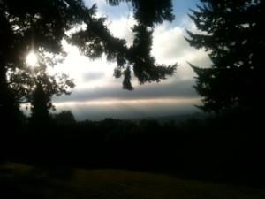 Beautiful Morning in Portland