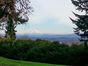 Mt Hood in Portland 2