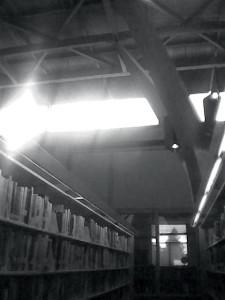 Hall of Books by RH Wilson