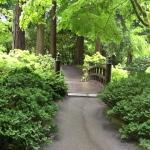Japanese Garden Path by  Cat Wilson
