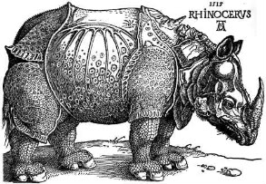 "Albrecht Durer's print of ""Rhinoceros"" - from Photobucket"